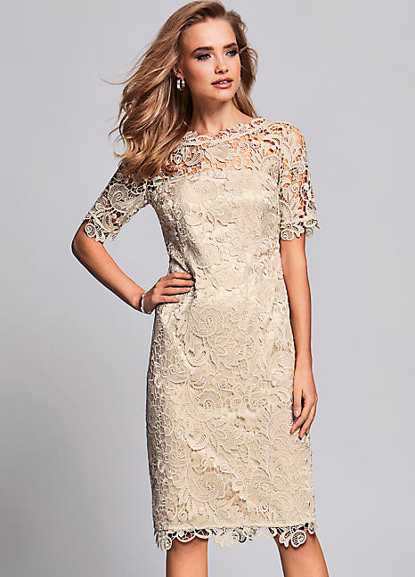 561c283ed8544 Petite Lace Shift Dress by Kaleidoscope Petite | Kaleidoscope